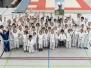 Judo Fotos 2017