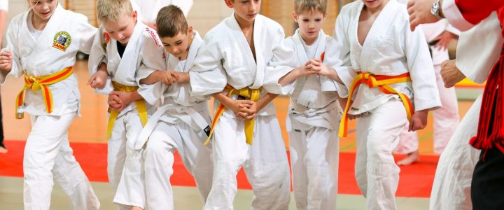 Internationaler Landeslehrgang Budo 28./29.04.2018